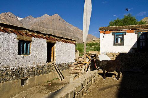A Spiti village