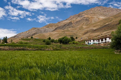 Pin Valley, Spiti